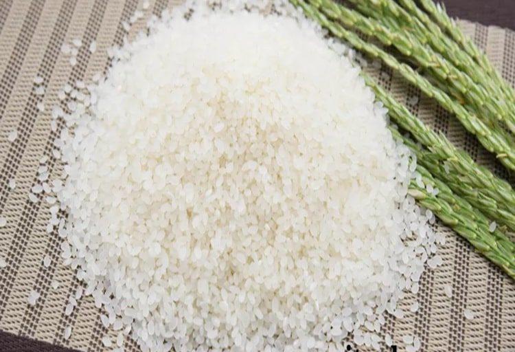 برنج عنبربو یا شمال کدام برای توزیع بهتر