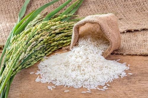 محل خرید برنج عنبربو