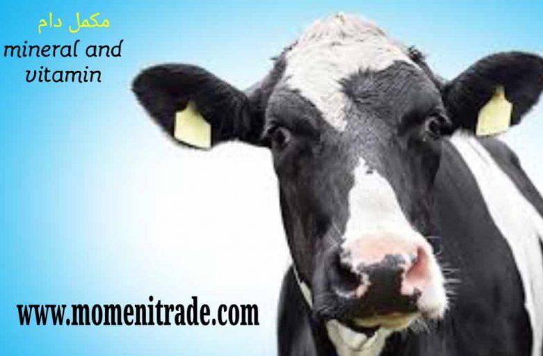 مکمل ویتامینی معدنی گاو شیرده